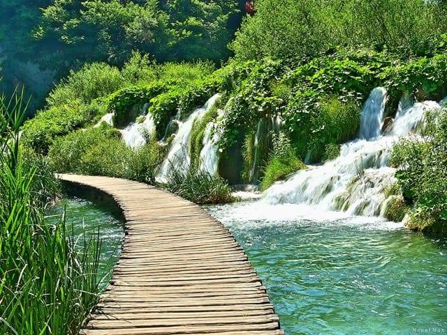 プリトヴィツェ湖群国立公園の画像 p1_3