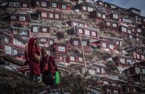 標高4000mの山脈で暖房無し;美学が滲み出る「僧だらけの村」があった!