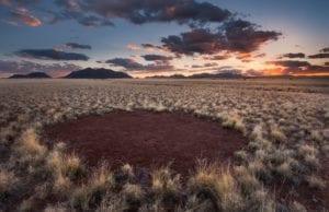「大地がハゲる!」奇妙な現象「妖精の輪(Fairy Circles)」(ナミビア共和国の謎)