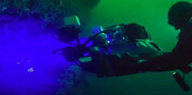 不思議で面白い深海魚の生態5選(世界最深部のブサカワ&ホラーな奴ら)