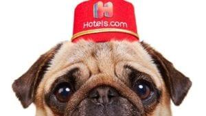 1分でホテルズドットコムを知る10のポイント(クーポン, LINEサポート, 使い方, 航空券など)